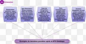 NotariatBts Memes - Advanced Vocational Diploma Dietitian Dietetica Nutrition Brevet De Technicien Supérieur PNG