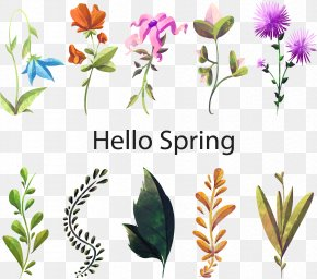 Hello Spring Flowers - Floral Design Watercolor Painting Flower Plant PNG