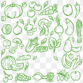 Vegetable Material - Vegetable Green Food PNG