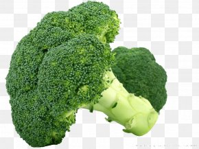 Fresh Fruits And Vegetables,broccoli - Broccoli Cauliflower Cabbage Vegetable Brussels Sprout PNG