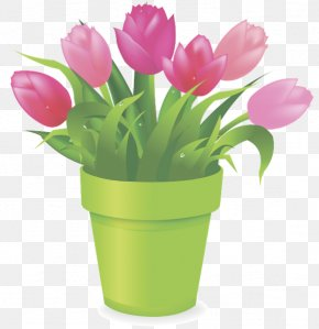 Tulip - Tulip Flowerpot Stock Photography Clip Art PNG