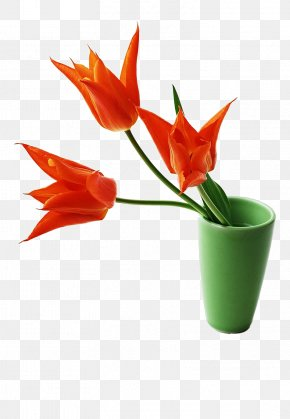 Three Tulip Flower Arrangement - Vietnam Ngxe0y Nhxe0 Gixe1o Viu1ec7t Nam Teachers Day 20 November PNG
