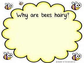 Bumblebees Pictures - Teacher Student School Clip Art PNG