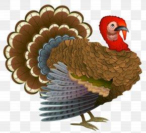 Turkey Clipart - Turkey Thanksgiving Dinner Cornucopia Clip Art PNG
