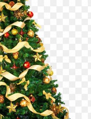 Christmas Elements - Christmas Tree Christmas Lights Stock Photography Clip Art PNG