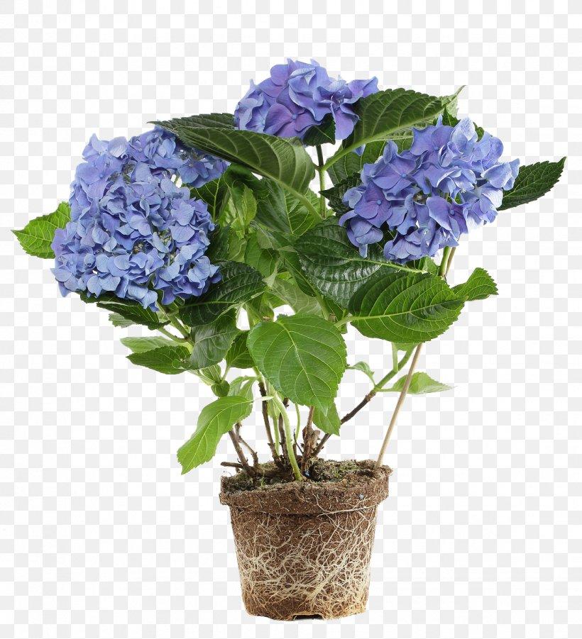 Flowerpot Flower Box Hydrangea Bonsai, PNG, 1132x1244px, Flowerpot, Annual Plant, Artificial Flower, Blue, Bonsai Download Free