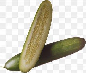 Salt Cucumbers Image - Cucumber Vegetable Clip Art PNG