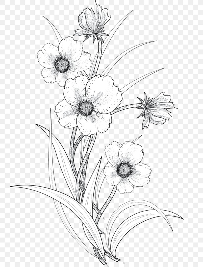 Drawing Flower Line Art, PNG, 741x1079px, Drawing, Art
