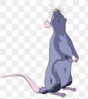 Rat & Mouse - Rat Drawing Cat Line Art Sketch PNG