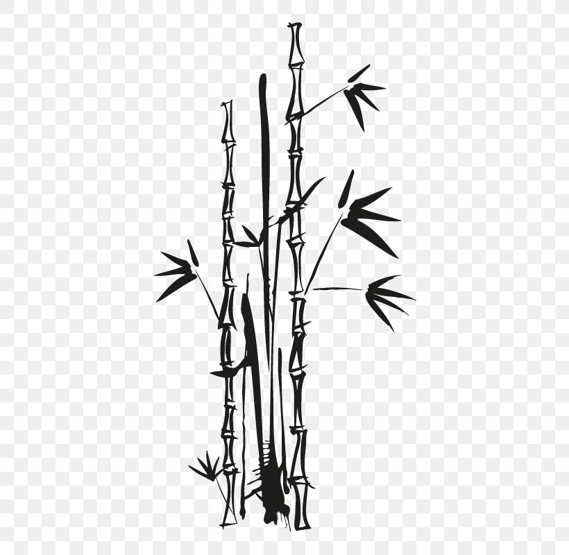 vector graphics euclidean vector bamboo image png 600x800px bamboo blackandwhite branch drawing grass download free vector graphics euclidean vector bamboo