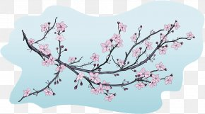 Decorative Illustrations Of Cherry Blossom Buds - Cherry Blossom Illustration PNG