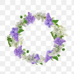 Babys Breath Breath Wreath - Floral Design Flower Illustration Wreath Art PNG