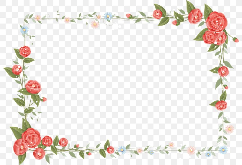Flower Picture Frames Photography Png 800x561px Flower Area