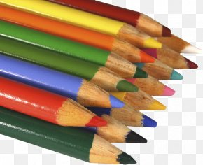 A Bunch Of Pencil - Artist Drawing Painting PNG