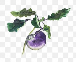 Creative Hand-painted Small Eggplant - Eggplant Google Images Download Icon PNG