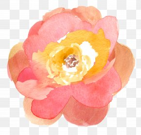Watercolor Flower - Watercolor Painting Flower Drawing Clip Art PNG