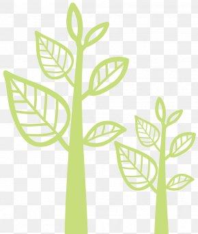 SECTION TREE - Grasses Plant Stem Leaf Line Clip Art PNG