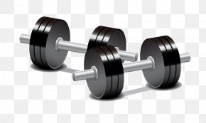 Cartoon Dumbbell - Dumbbell Weight Training Olympic Weightlifting Barbell PNG