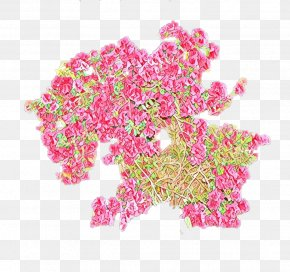 Magenta Cut Flowers - Pink Flower Plant Cut Flowers Magenta PNG
