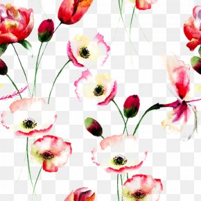 Beautiful Watercolor Flowers Background - Poppy Flowers Watercolor Painting Floral Design PNG