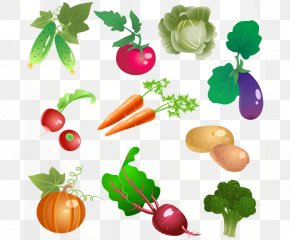 Vegetable Vector - Vegetable Icon PNG