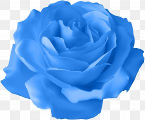 Blue Rose Transparent Clip Art Image - Rose Purple Clip Art PNG