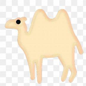 Arabian Camel Bactrian Camel - Vintage Background PNG