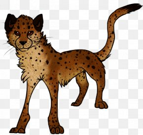 Cheetah - Cheetah Cat Lion Mammal Carnivora PNG