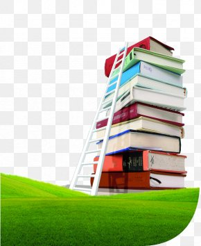 Ladder Of Success Sea Of ​​books - Library Science Library Classification Librarian Library And Information Science PNG