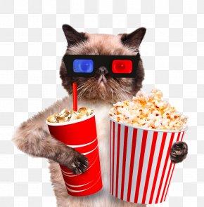 Coffee Cat Popcorn - Cat Kitten Dog Veterinarian Pet PNG