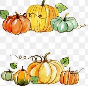 Thanksgiving Pumpkin Painted Material - Thanksgiving Gratitude Gift Clip Art PNG