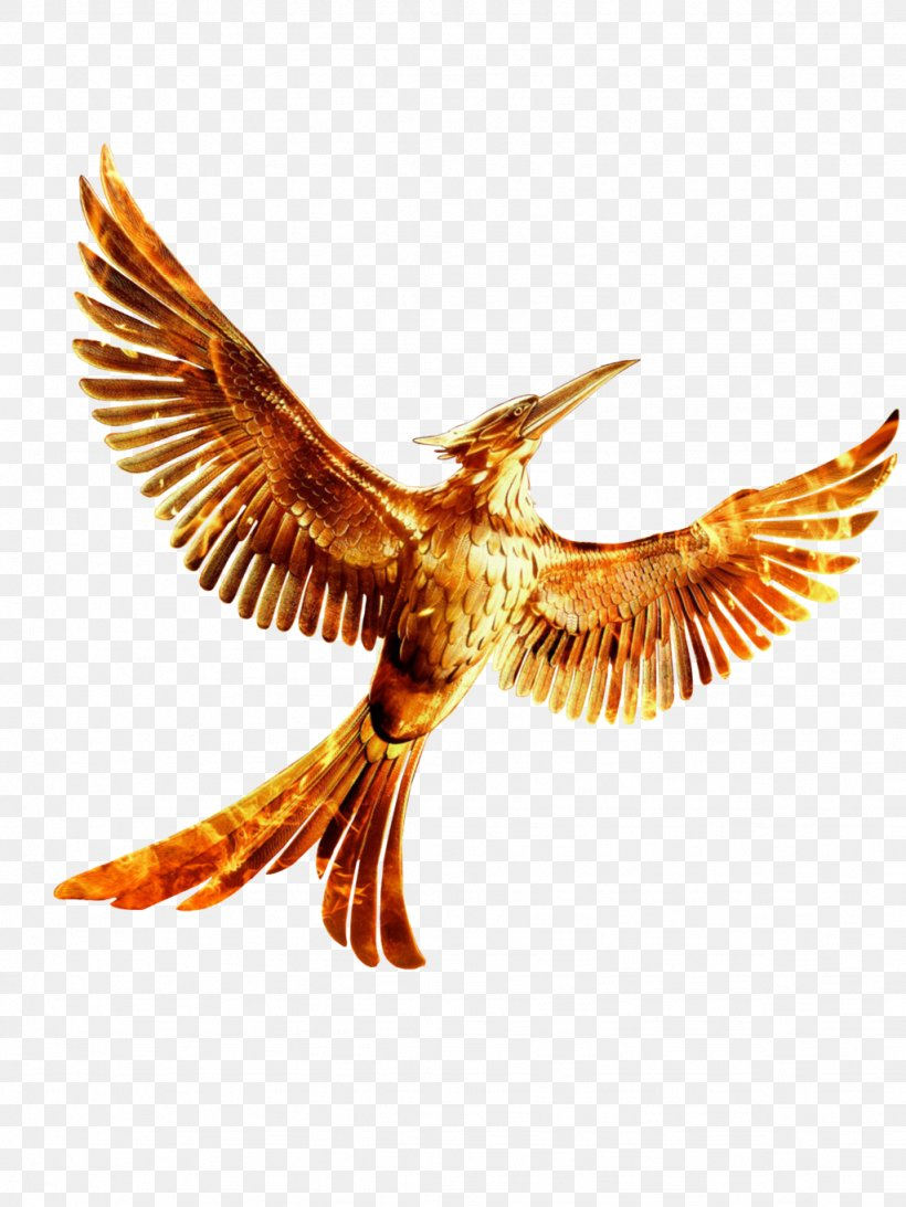 Mockingjay The Hunger Games YouTube Clip Art, PNG, 1024x1365px, Mockingjay, Beak, Bird, Bird Of Prey, Eagle Download Free