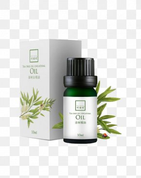 Oil Can Couture Spring - Tea Tree Oil Essential Oil Narrow-leaved Paperbark Cosmetics PNG