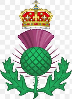 Royal - National Symbols Of Scotland Thistle PNG