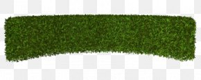 Green Grass - Hedge Lawn Artificial Turf Rectangle PNG