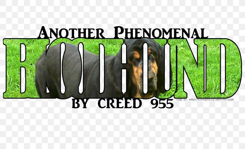 Logo Mammal Brand Font, PNG, 800x500px, Logo, Brand, Grass, Green, Mammal Download Free