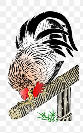 Rooster - Rooster Chicken T-shirt Clip Art PNG