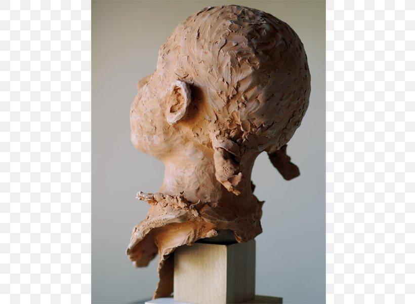 Bust Sculpture Portrait Skull Jaw Png 800x600px Bust Bone Com Copyright Facebook Download Free