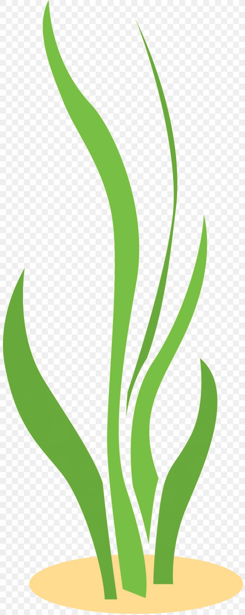 Leaf Clip Art Plant Stem Line Commodity, PNG, 827x2077px, Leaf, Botany, Commodity, Flower, Grass Download Free