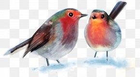Cartoon Bird - Santa Claus Paper Christmas Gift-bringer Christmas Gift-bringer PNG