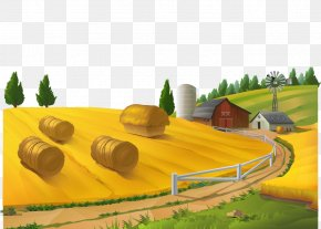 Autumn Wheat Field Vector Material - Farm Rural Area Landscape Stock Photography PNG