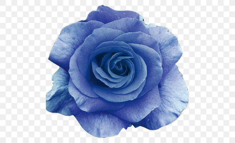 Flower Bouquet Blue Rose Wallpaper, PNG