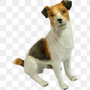 Jack Russell Terrier - Dog Breed Jack Russell Terrier English Foxhound PNG