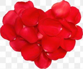 Valentine's Day - Valentine's Day Diary Blog LiveInternet Clip Art PNG