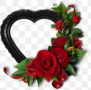 Valentine's Day - Garden Roses Valentine's Day Picture Frames Love PNG