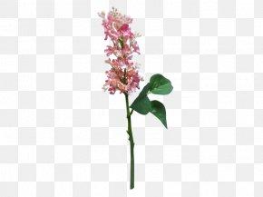 Lilac Flower - Artificial Flower Cut Flowers Plant Stem Lilac PNG
