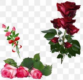 Rose - Garden Roses Artificial Flower Clip Art PNG
