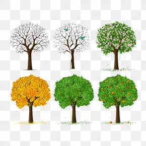 Tree Of Life - Tree Euclidean Vector Illustration PNG