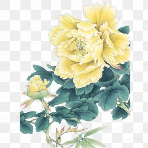Peony - Luoyang Gongbi Moutan Peony Chinese Painting PNG