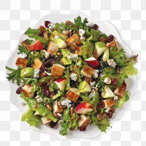 Healthy Eating - Chicken Salad Caesar Salad Fast Food Wrap Wendy's PNG